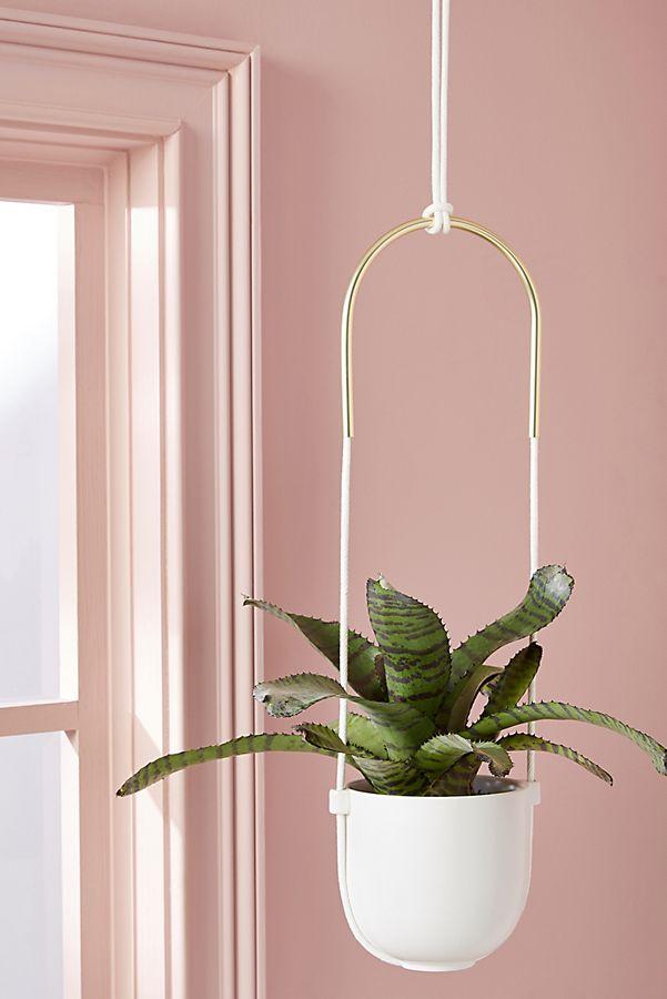 Slide View: 1: Bolo Hanging Planter