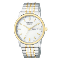 Citizen_Eco-Drive_Flexible_Band