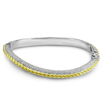 Sterling_Silver_and_Yellow_Tone_Rope_Design_Bangle_Bracelet