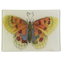 John_Derian_Orange_Butterfly_Rectangular_Tray