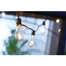 CANVAS Vintage Edison String Lights 10 Count