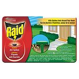 Raid Outdoor Ant Spikes, 6-Pk