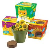 Grow Kids Wildlife Gardens