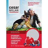 The Dog Whisperer with Cesar Millan Cranbe...