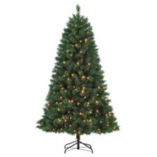 Noma Christmas Trees