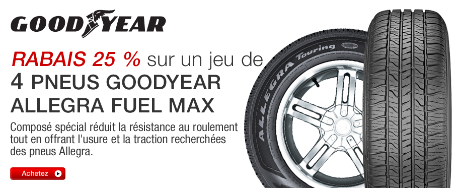 Goodyear Allegra Fuel Max