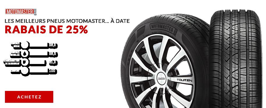 Motomaster SE3