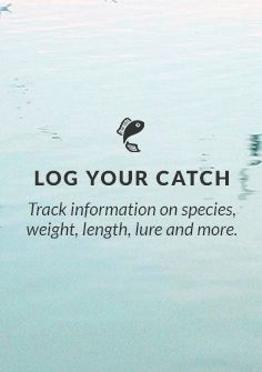 Track information on species, weight, length, lure and more.
