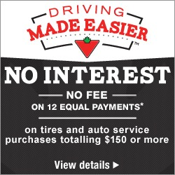 EQUAL PAYMENTSNO INTERESTNO FEE for 12 months*