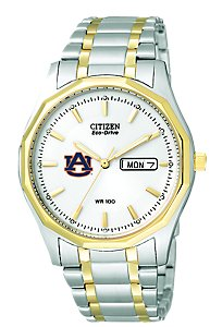 Citizen Eco-Drive White Two-Tone (Men's)