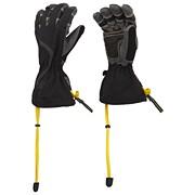 Women's Echidna Glove
