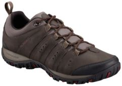 Men's Woodburn II shoe