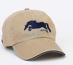 AWST Jumper Adult Ball Cap