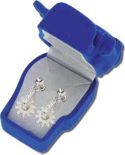ASTW Rowell Earrings with Gift Box