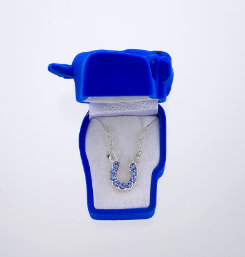AWST Rhinestone Horseshoe Necklace with Gift Box