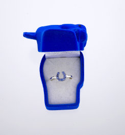 AWST Rhinestone Horseshoe Ring with Gift Box