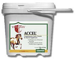Vita Flex Accel by Farnam Best Price