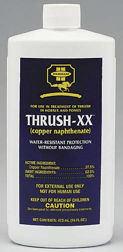 Farnam Thrush XX Best Price
