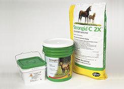 Pfizer Health Strongid C2X Daily Horse Dewormer Best Price