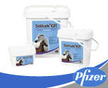 Pfizer Health Solitude IGR In Feed Fly Control