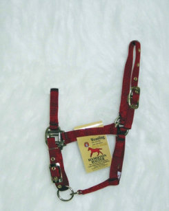 Hamilton Foal Halter with Adjustable Chin Best Price