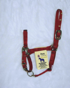 Hamilton Pony Halter with Adjustable Chin and Snap Best Price