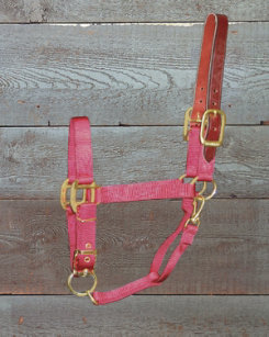 Hamilton Yearling Halter with Leather Crown Best Price