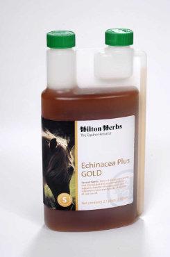 Hilton Herbs Echinacea Plus Gold Best Price