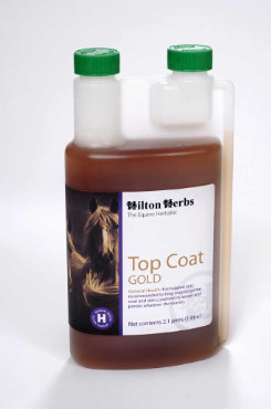 Hilton Herbs Top Coat Gold Best Price