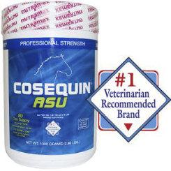 Cosequin ASU Powder Best Price