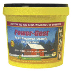 Select Powergest Best Price