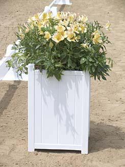 Burlingham Sports Arena Flower Box Best Price