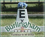 Burlingham Sports Arena Markers (Set of 8)
