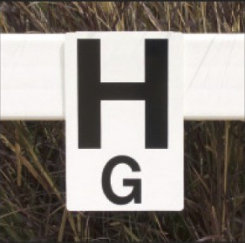Burlingham Sports Rail and Wall Arena Letters Best Price