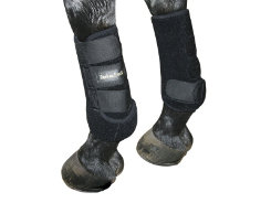 Back On Track Therapeutic Front Exercise Boots Best Price