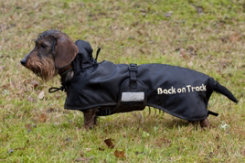 Back On Track Regular Therapeutic Dachshund Dog Blanket Best Price