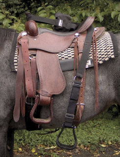 Cashel Step-Up Stirrup in a Bag