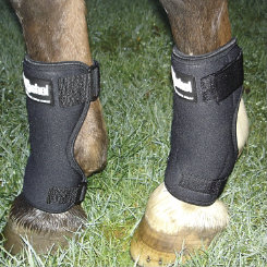 Cashel Stall Sore Boot Best Price