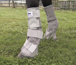 Cashel Crusader Leg Guards Best Price