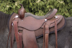 Cashel PF Rider Shaped Saddle Pad Best Price