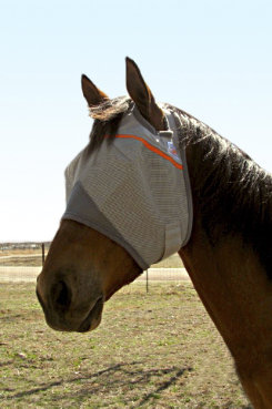 Cashel Animal Rescue Benefit Fly Mask Best Price