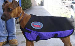 CoolMedics Canine Cooling Coat Best Price