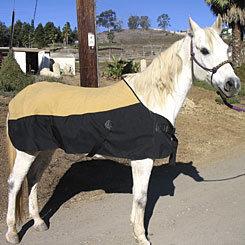 CoolMedics Cooling Equine Full Horse Blanket Best Price