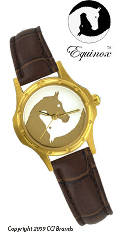 CCI Equinox Watch Gold Case Gold White Horse Logo Face Brown Band Best Price