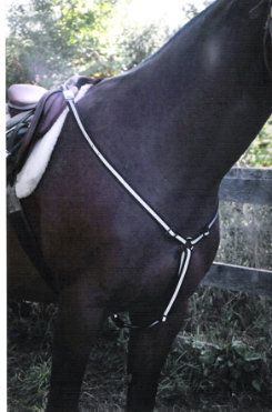 Horse e Lites Sports Reflective LED Horse Breastcollar Best Price