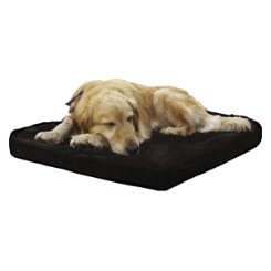 Draper Canine Therapy Plush Dog Bed Best Price