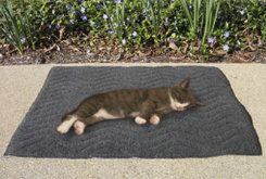 Draper Canine Therapy Cat Mat Best Price