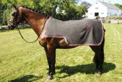 Draper Equine Quarter Sheet Best Price