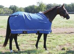 Classic Equine Nylon Horse Sheet Best Price