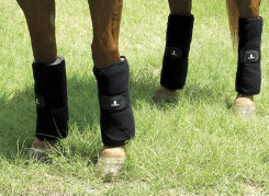 Classic Equine Stress Guard Leg Wraps Best Price